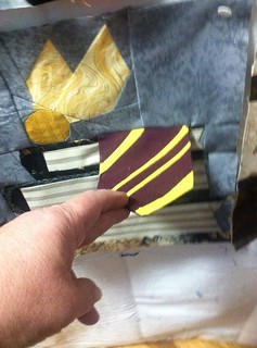 Hogwarts tie and snitch