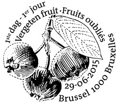 13 Fruits oubliés zBXL N