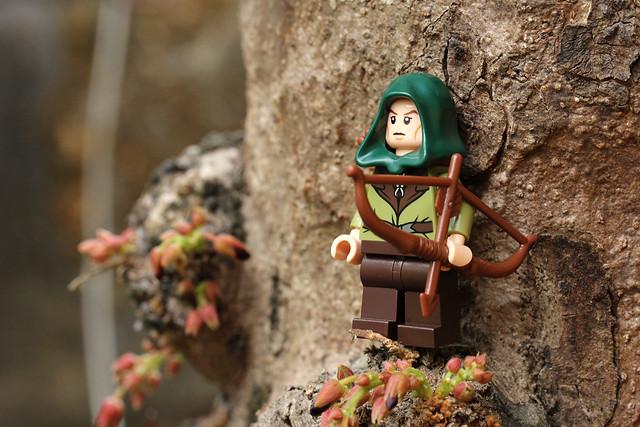 Mirkwood Elf Guard