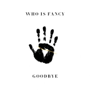 Who Is Fancy – Goodbye