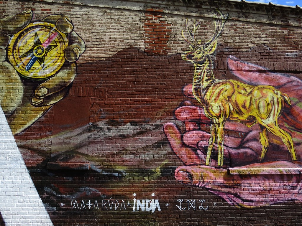 Matarvda, Brooklyn, NY
