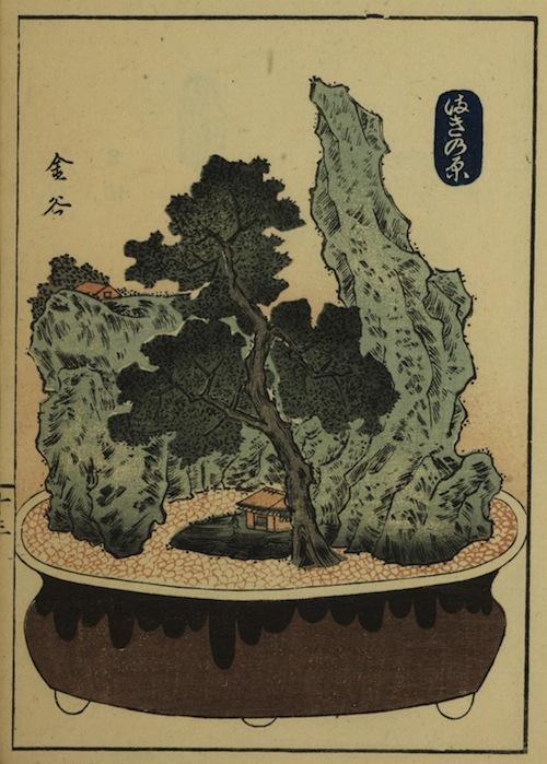 japan53-1