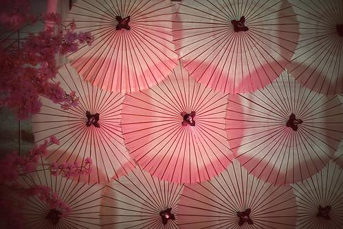 japan tokyo spring sakura cherryblossoms meguro kasa traditionaljapaneseumbrellas