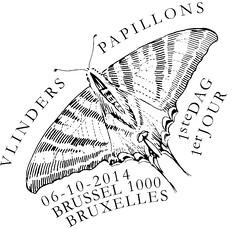 19bis PAPILLONS zBXL N
