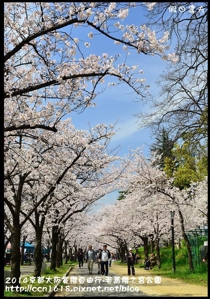 2014京都大阪賞櫻自由行-毛馬櫻之宮公園DSC_1981