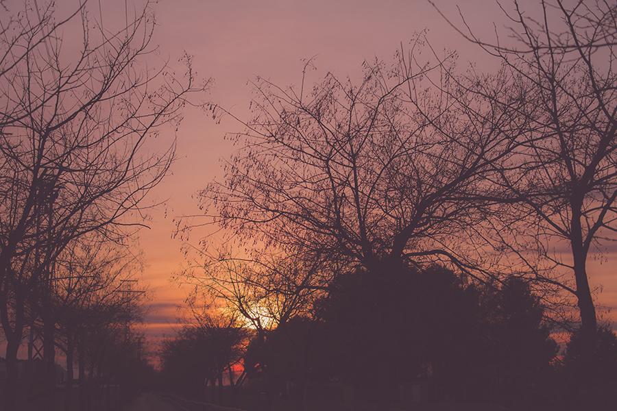 Adiós días de invierno
