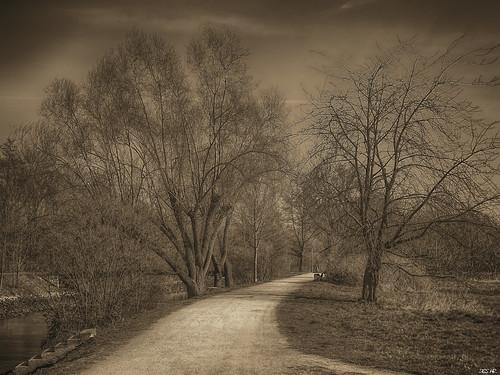 Der Weg  /  The Way