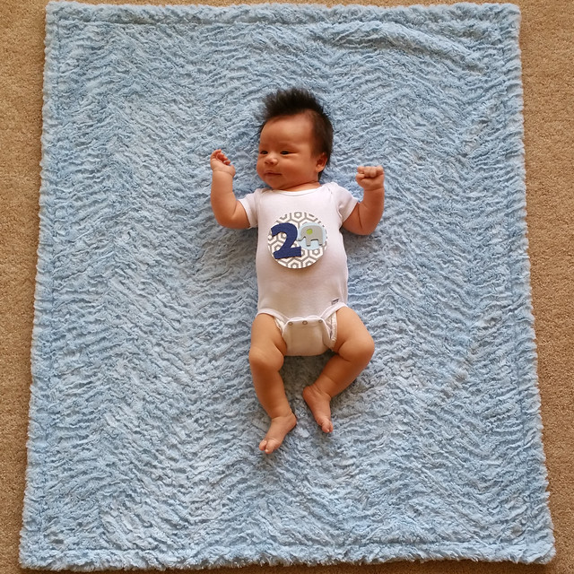 Parker's Two Month Photo | shirley shirley bo birley Blog