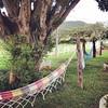 Só redes #rede #hammock #minasgerais #montesiao