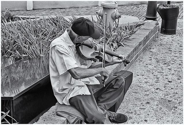 Violinista Callejero (Street Violonist)