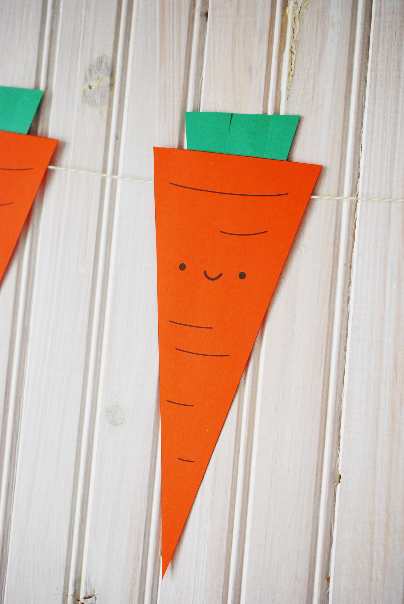 Carrot Banner