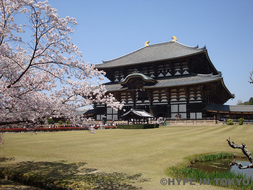 Todaiji Shrine