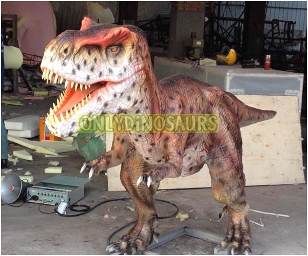 Juvenile T-Rex Model