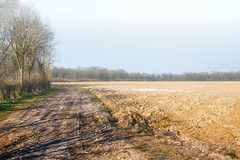 At the end of the dirt road Ternoise - Photo of Ligny-Saint-Flochel