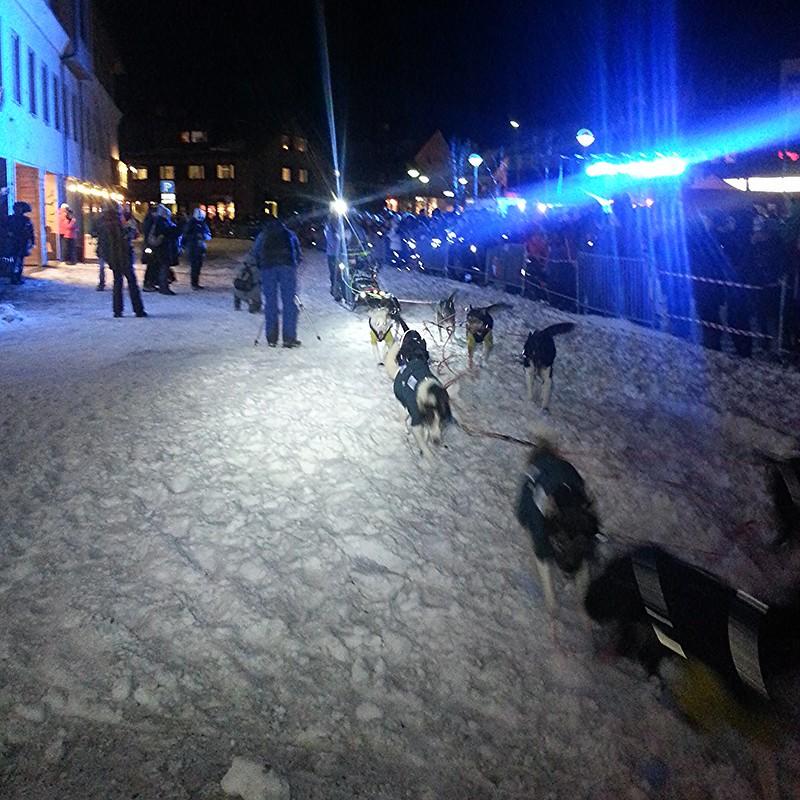 Harald Tunheim på vei inn til Kirkenes sentrum som første spann. Foto: Eirik Fløtlien