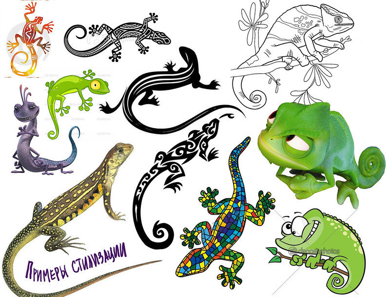 Lizards-lesson-style