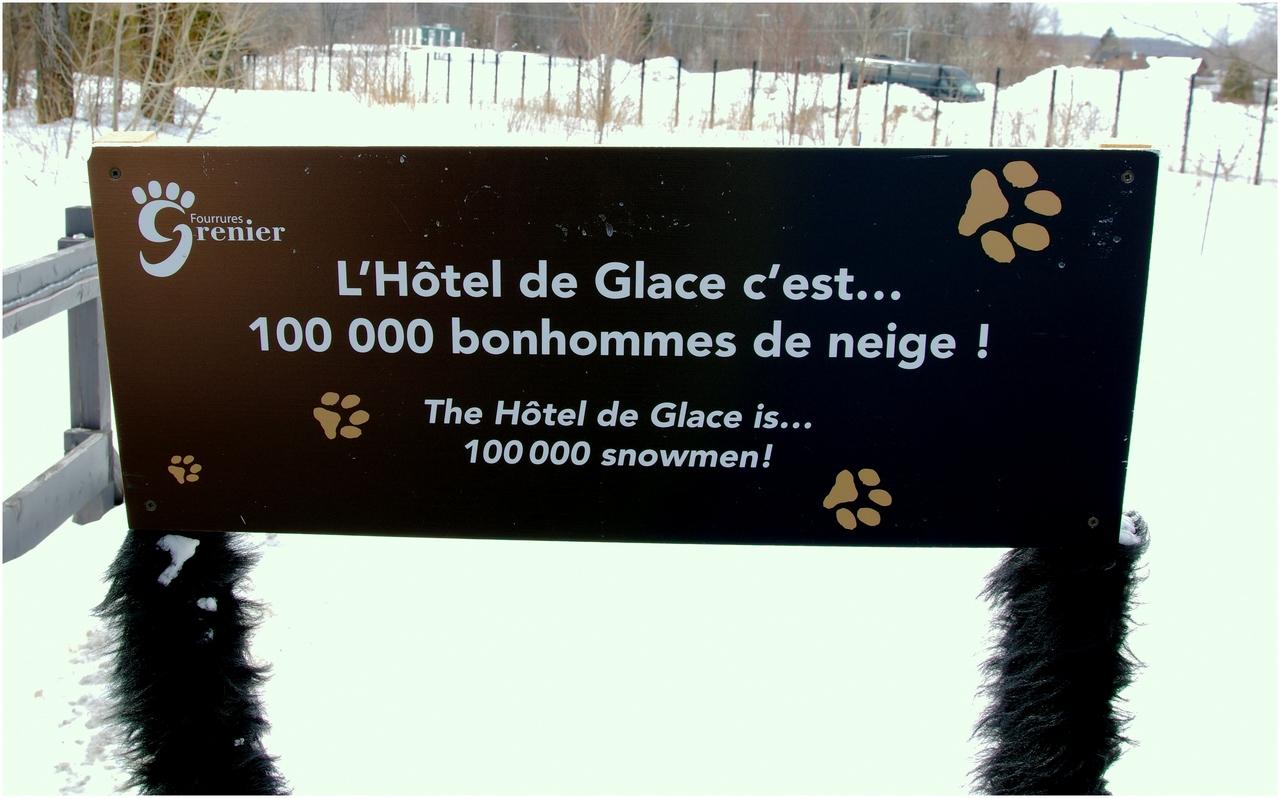 Hôtel de Glace 2015  (Québec- Canada) 16854386282_38d219e8e2_o