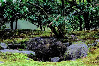 Tsukubai-Seattle Japanese Garden