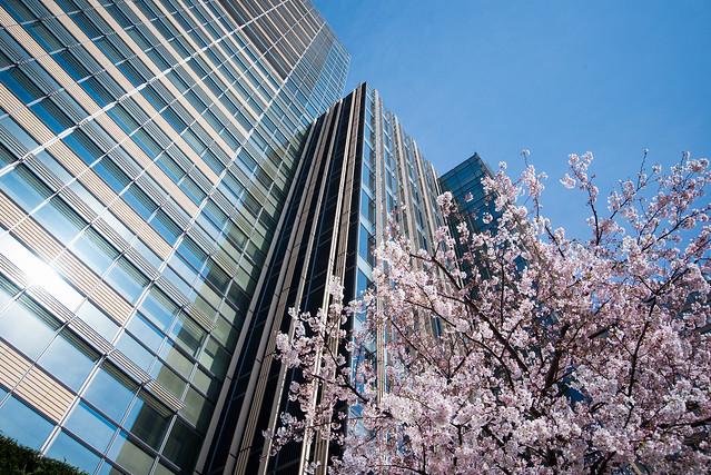 Upward of Tokyo Midtown (東京ミッドタウン)