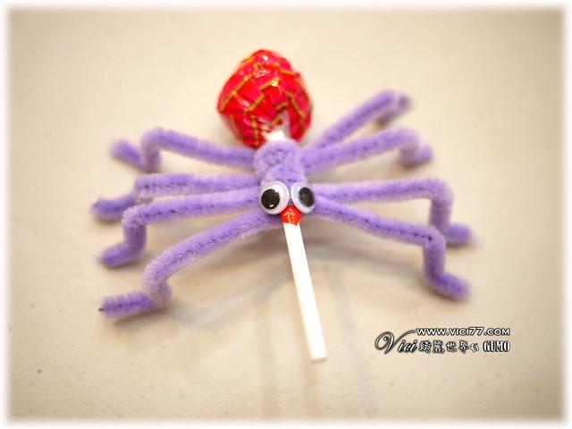 0331毛根蜘蛛020