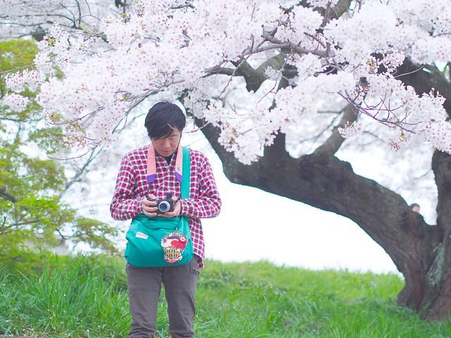 150404_Sakura_and_ 7