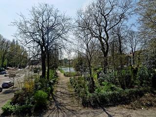 Parc Sobiesky - Sobiesky Park