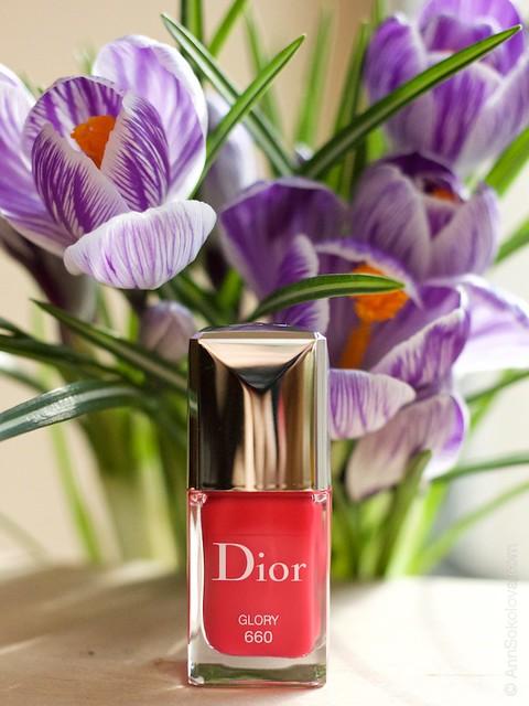 11 Dior #660 Glory