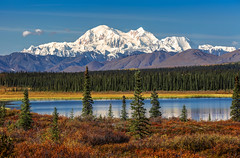 Denali on an Autumn Day