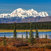 Denali on an Autumn Day by Cole Chase Photography