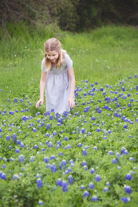 indigo and the bluebonnets