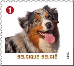 09 Animaux de compagnie timbrej