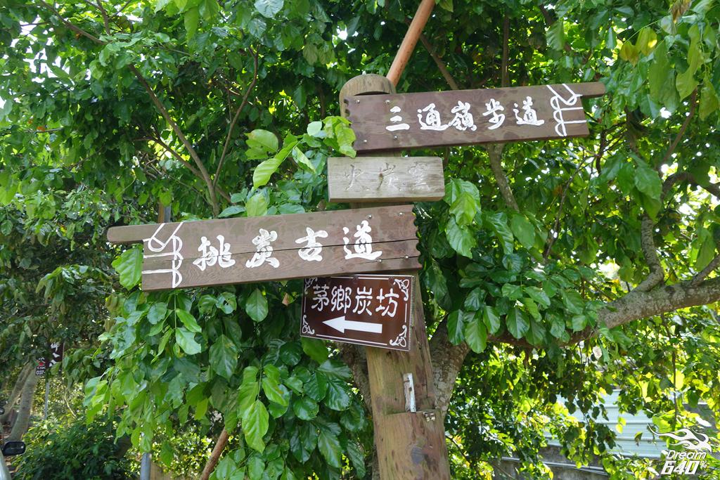 苗栗賞油桐-客家大院九華山天空步道60