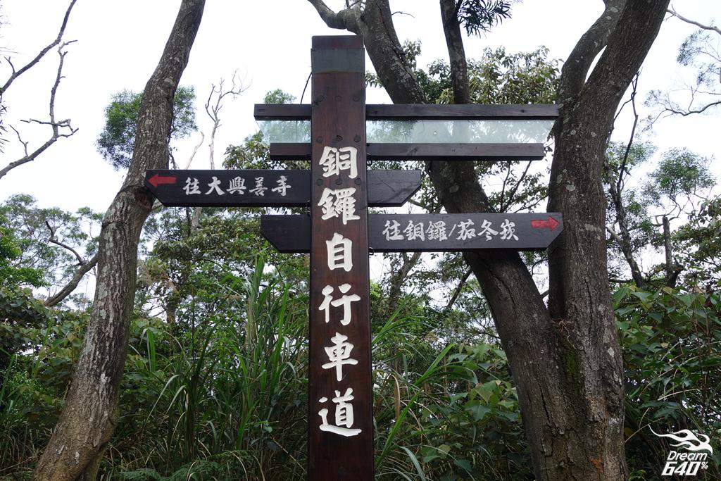 苗栗賞油桐-客家大院九華山天空步道28
