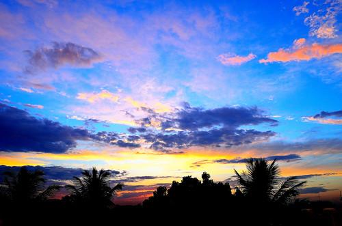 trees sunset wallpaper sun silhouette nikon azure d5100
