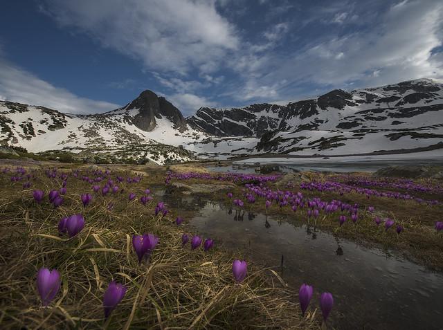 Spring on Lakes