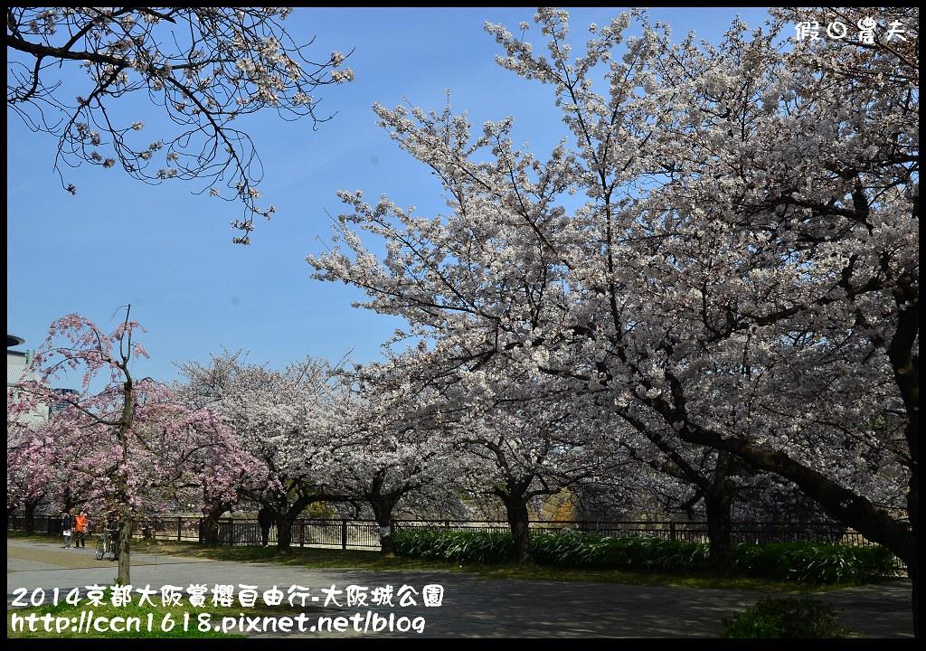 2014京都大阪賞櫻自由行-大阪城公園DSC_1683