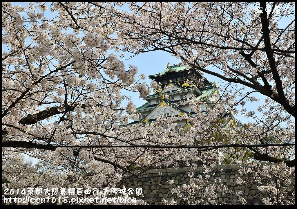 2014京都大阪賞櫻自由行-大阪城公園DSC_1858