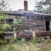 Wideman Abandoned House-001