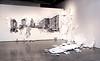 Exhibit: Leyla Cardenas: Scarcity