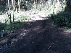 Aldrich Butte Area Hike