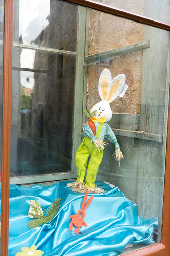 Another Rabbit in the Shop Window