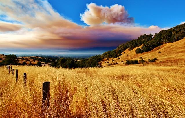 Soberanes Fire at Robinson Canyon