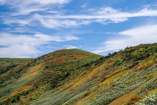 巻機山最高点付近の紅葉が綺麗です