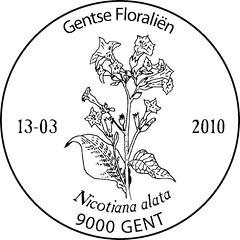 06 GENT
