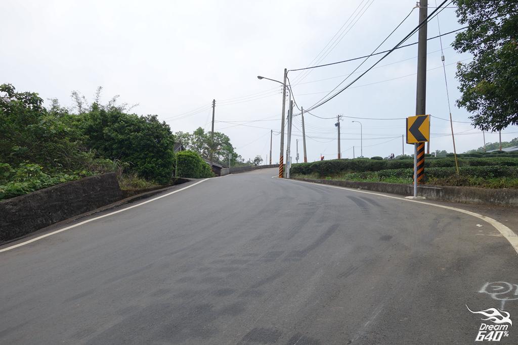 苗栗賞油桐-客家大院九華山天空步道26