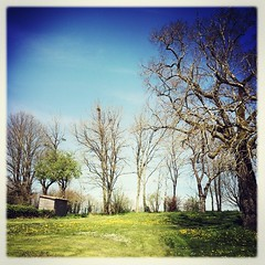 Et le beau temps continue... De hele week weer van dit mooie weer op @lagrossetalle! #deuxsèvres #printemps