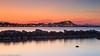15-03-11 - Subasta Pescado Dénia-519