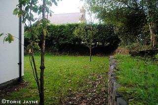 Front garden before 1