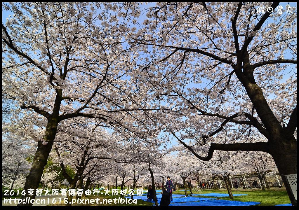 2014京都大阪賞櫻自由行-大阪城公園DSC_1693