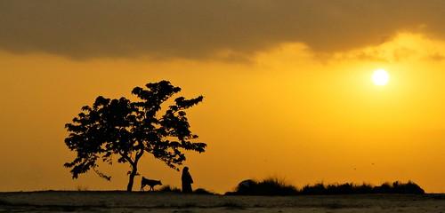 camera light sunset people sun sunlight last canon lens golden sand flickr fotografie dusk iso400 exploring scout explore 55mm hour memory kit manual 1855 bangladesh lifescape bera 3556 pabna canon700d xplorstats